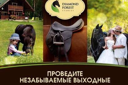 Конный клуб «DIAMOND FOREST»